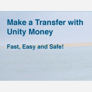 UNITY MONETARY SERVICES